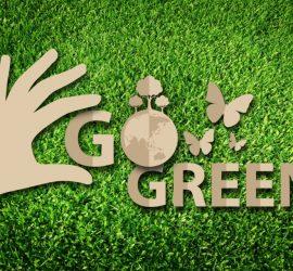 Doanh nghiệp xanh (Green Business) và các bước để trở thành doanh nghiệp xanh?