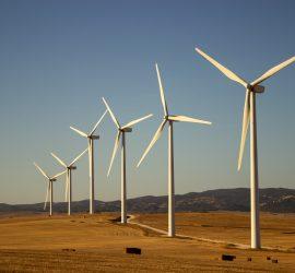 Cơ cấu điện gió, mặt trời trong Quy Hoạch Điện VIII: Hiện Trạng và Giải Pháp