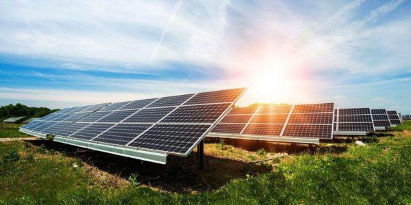 Cách chọn mua tấm pin năng lượng mặt trời chất lượng